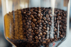 Coffee beans in a hopper of a burr coffee grinder