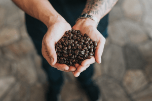 Photo of man holding dark roasted coffee beans